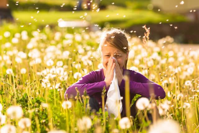 brustkrebs und allergien