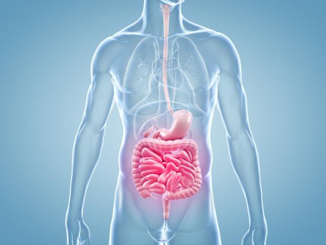 Immuntherapie bei Colitis Ulcerosa