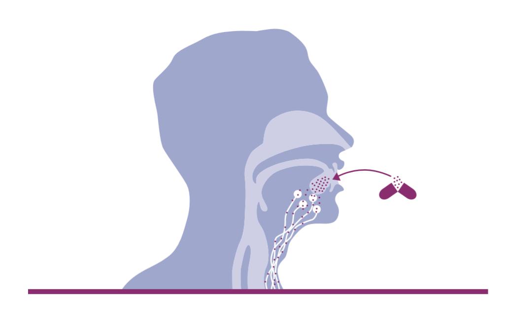 Mikroimmuntherapie Funktionsweise und Nebenwirkungen